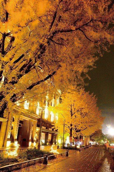 途經神奈川縣廳和橫濱開港資料館等重要歷史建築,街道洋溢著懷舊氛圍。