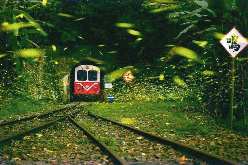 阿里山森鐵的道班及駕駛員的工作,面臨更多地形、氣候的困難與危險。 阿里山森鐵管理...