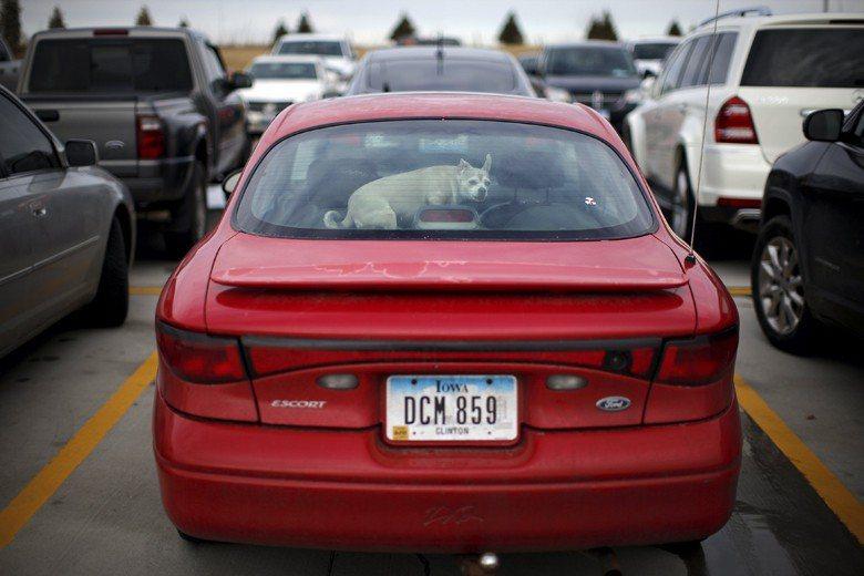 美國致力於提供足夠且免費的停車場,鼓勵汽車的使用率,更推動了繁盛的汽車文化。 圖/路透社