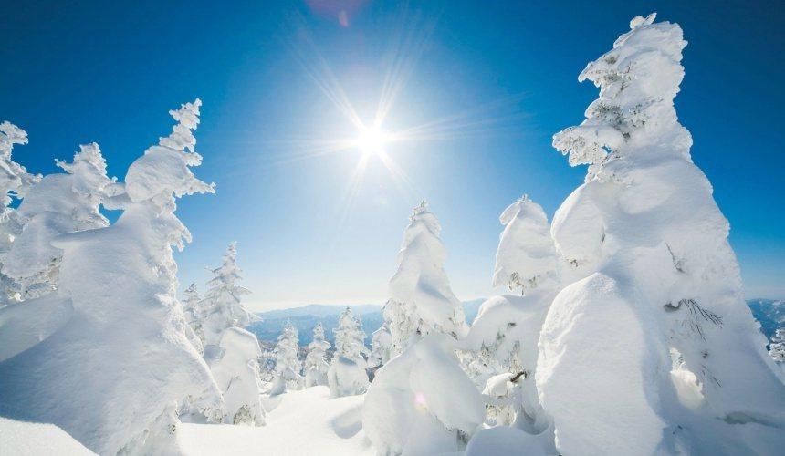 秋田觀光體驗調察員將到阿仁滑雪場中,觀賞東北三大樹冰景致的「森吉山樹冰」。圖/擷...
