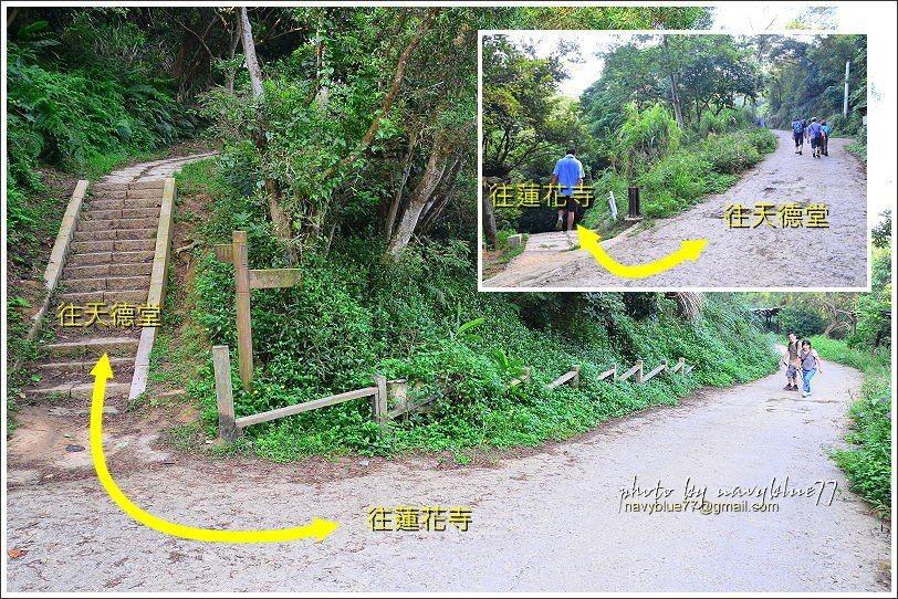 ↑全程只有這兩個叉路,只要稍微注意一下就不會走失。