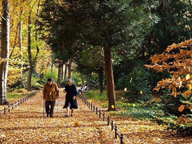 研究顯示,結婚伴隨而來的生活型態改變有助於降低失智症的發病機率。(photo b...