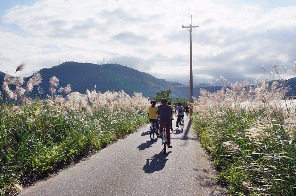 騎車穿梭於田間小路。(攝影/林郁姍)
