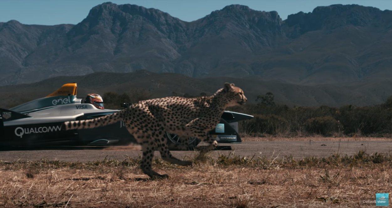 獵豹對決電動方程式賽車。路透