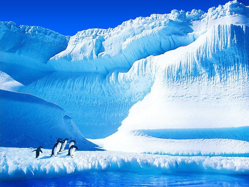 南極景觀成為近年熱門的旅行夢。圖/鴻鵠易遊提供