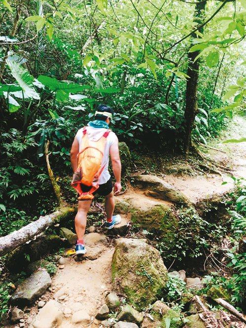三貂嶺步道沿途大部分的路段是平坡步道,適合健行休閒。 記者陳珮琦/攝影
