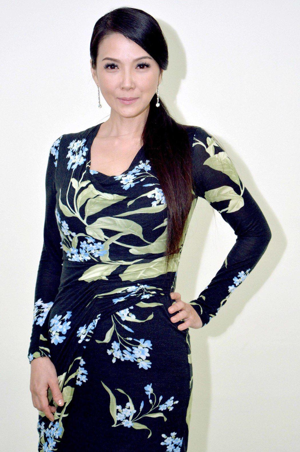 丁國琳加入8點檔「春風愛河邊」演出。圖/華視提供
