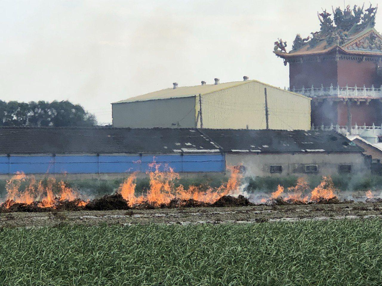 現在正值二期稻作收割期,但中南部還是稻草燒得如火如荼,從彰化、雲林、嘉義、台南,...