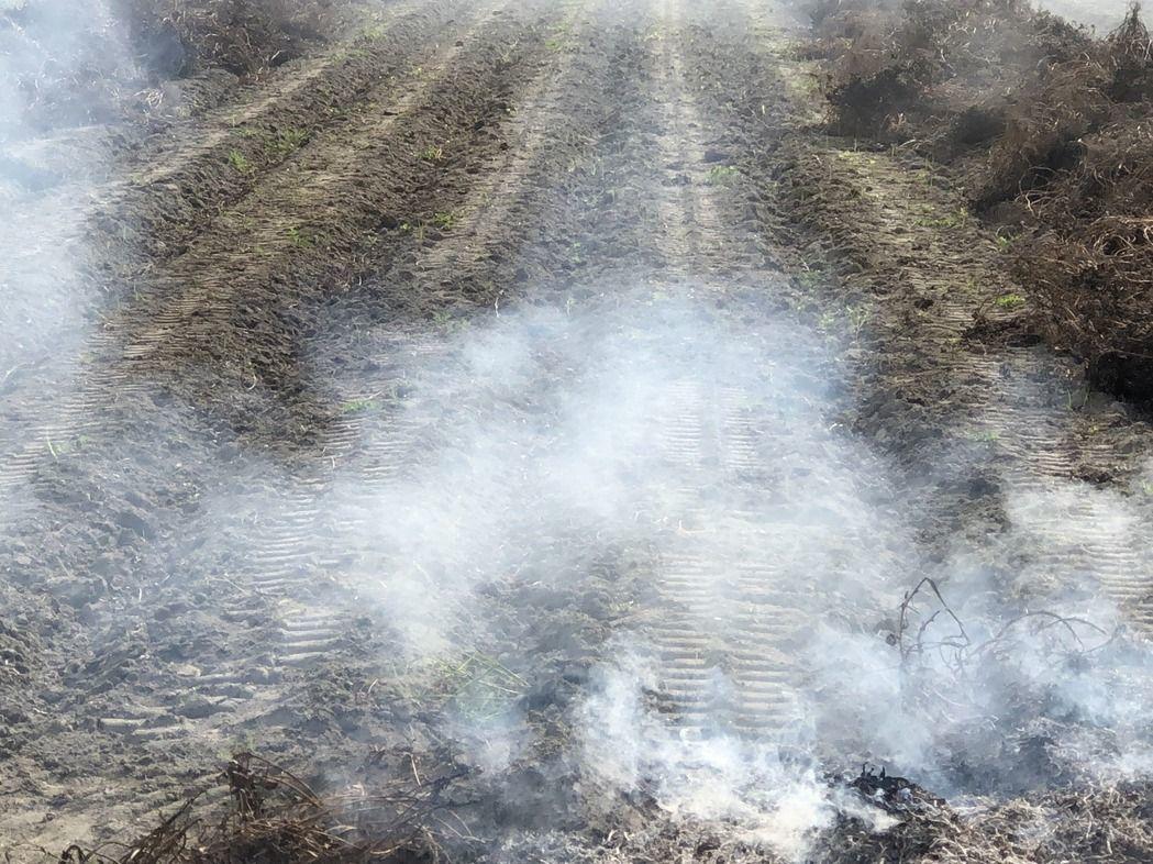 正值二期稻作收割期,但中南部還是稻草燒得如火如荼。圖/農民提供