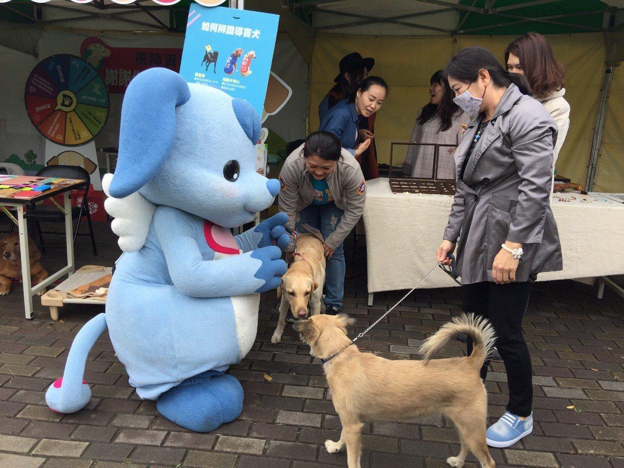 平時在路上看到的導盲犬,其實都是在工作狀態,不能近距離碰觸牠們,也因為如此,大家...
