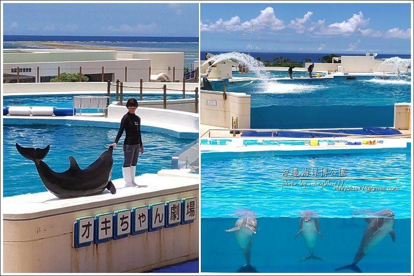 ↑逛完水族館接著可到海豚劇場看海豚秀,所以要注意海豚秀的場次時間,而且要稍稍提早...