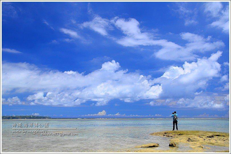 ↑烏龜海濱的海水極清澈乾淨。
