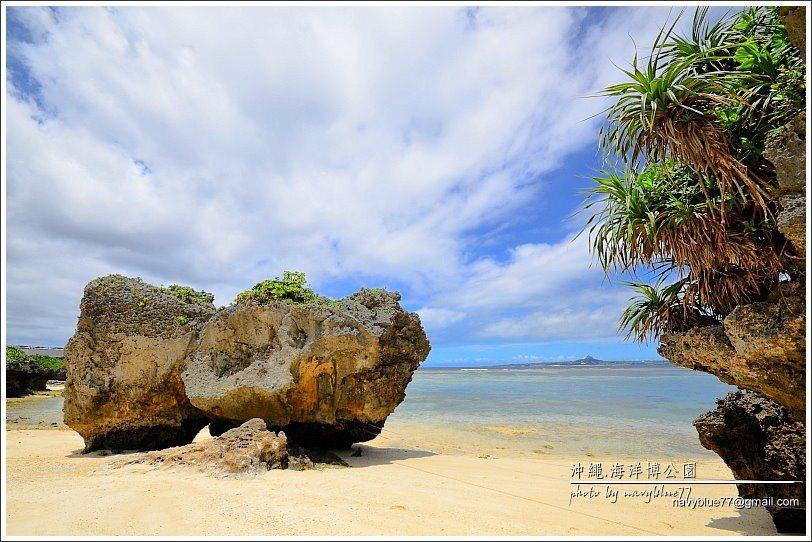 ↑烏龜海濱北側的珊瑚礁岩也有看頭。