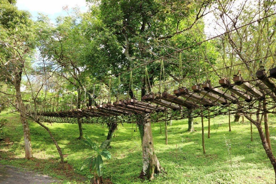 農田旁的觀景吊橋。(攝影/周惠儀)
