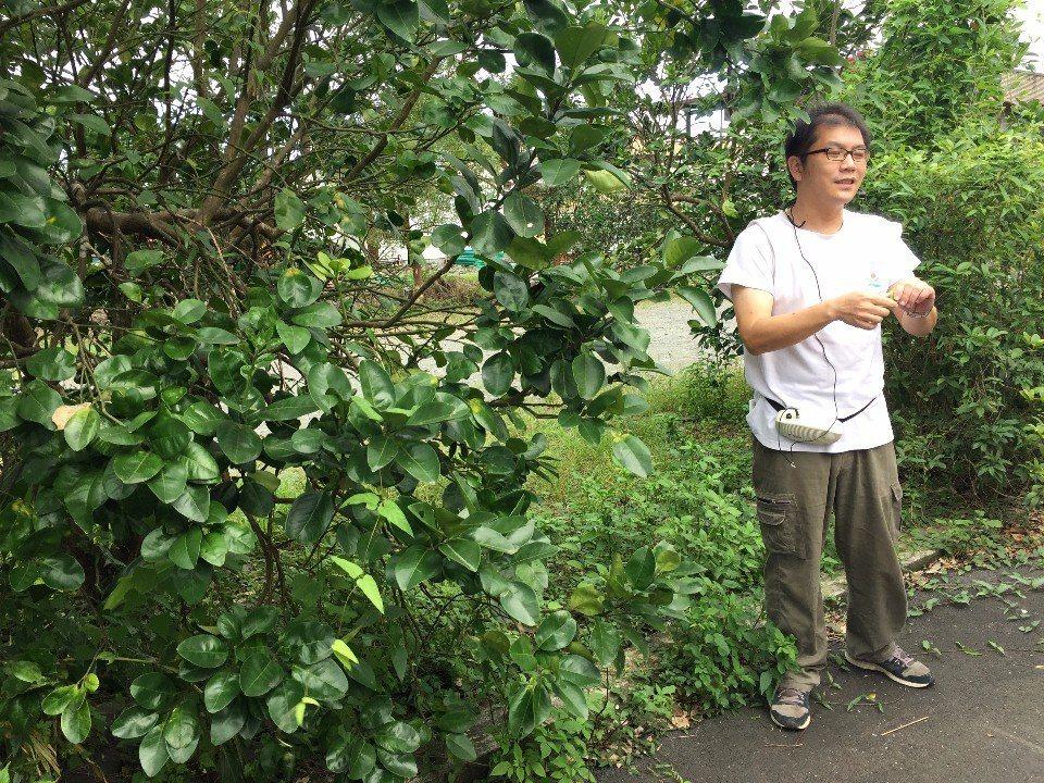 總幹事親自帶路導覽,為各位解說大進村的豐富生態環境。(攝影/周惠儀)