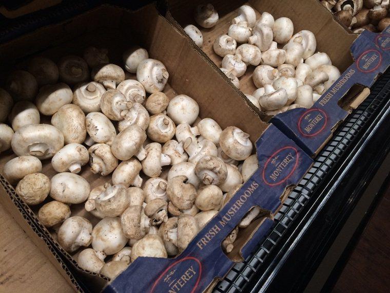 蘑菇示意圖。 本報資料照片