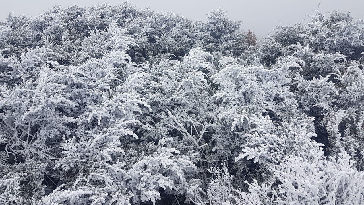 玉山觀測站形成霧淞。圖/中央氣象局提供