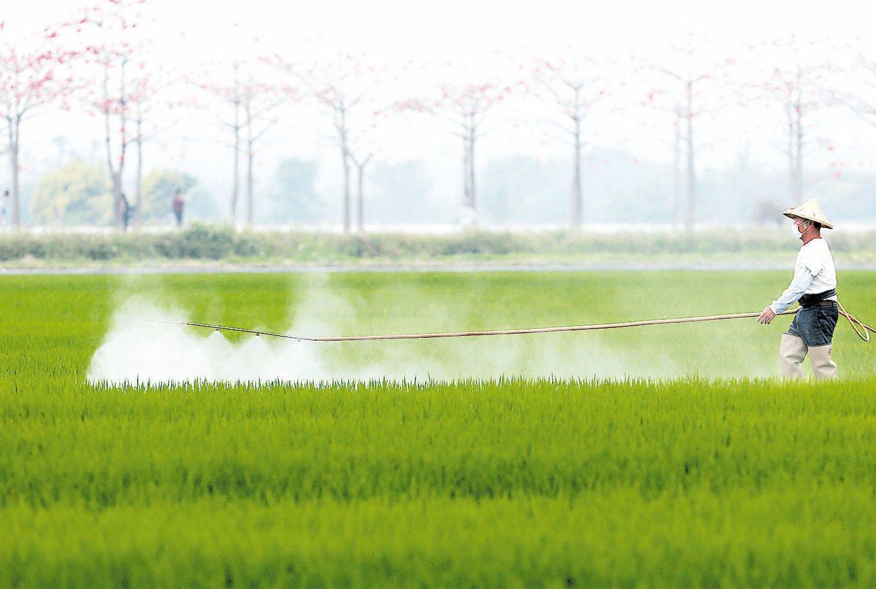 為改善農產品食安,農委會宣布10年後,達成全國農藥使用量減半的目標。 報系資料照