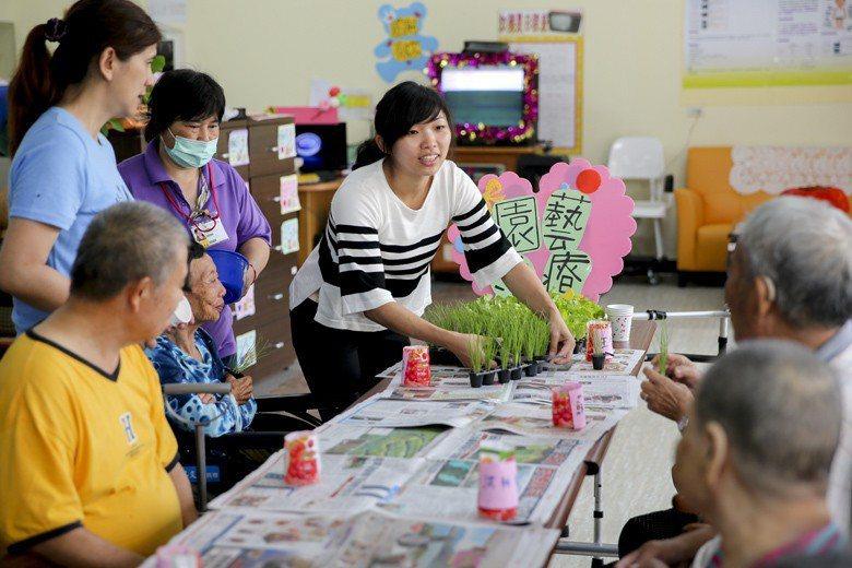 圖為社工員進駐日照中心,透過園藝課程讓長者參與種菜過程。 圖/聯合報系資料照