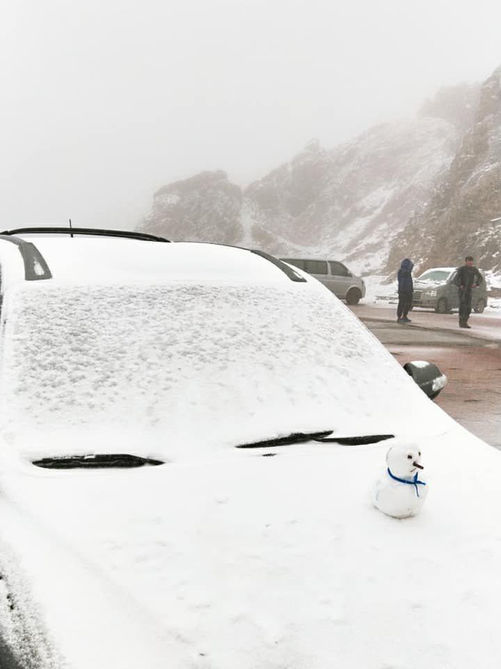 合歡山從昨凌晨3時許下冰霰,之後斷續降雪霰至上午10時,現場如白毯鋪地,但今雪霰...