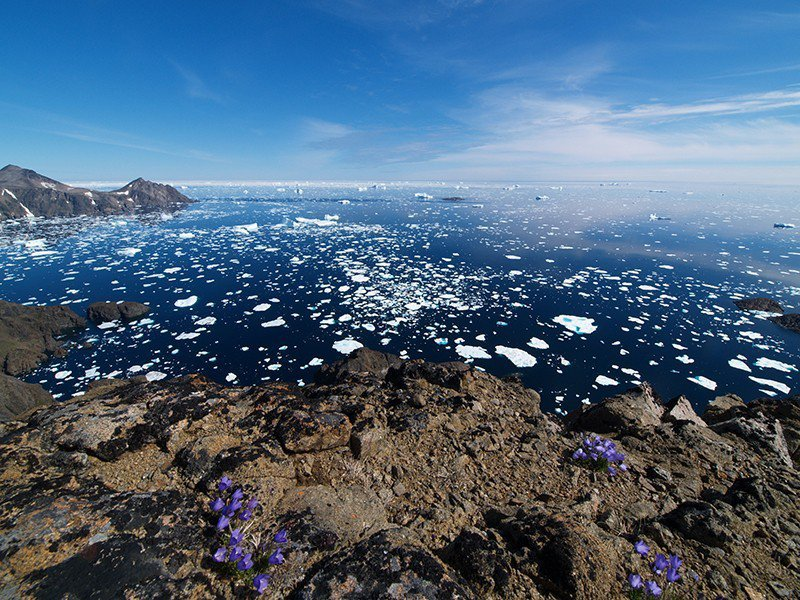 以前格陵蘭岩岸附近的海面都是浮冰,但因全球暖化使得夏天的浮冰迅速融化,冰河也後退...