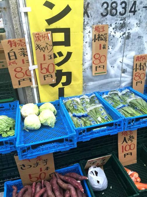 圖片來源/ 日本打工度假就職專家 授權使用