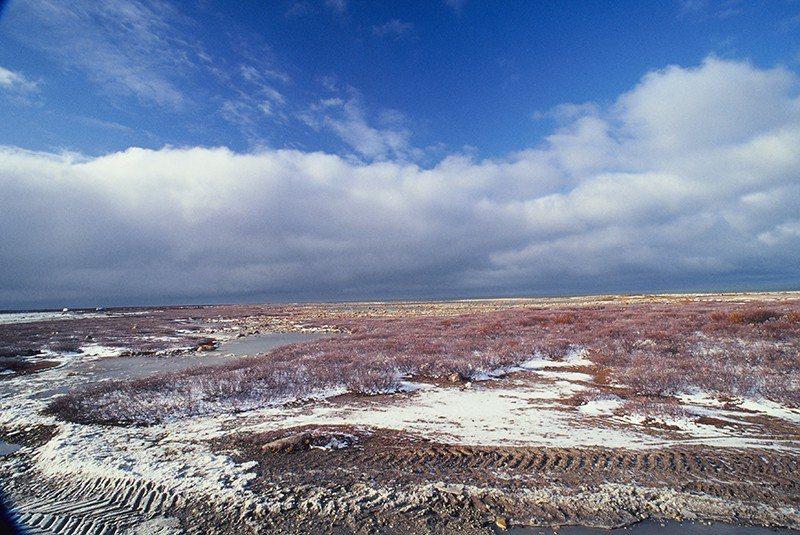 邱吉爾僻處北極圈,是一個寧靜的小鎮。