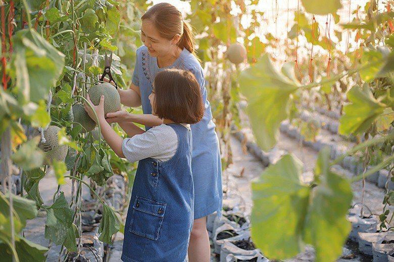 鄰近台灣的日本,早於2005 年已由官 方公布施行「食育基本法」,將食育視為智育...