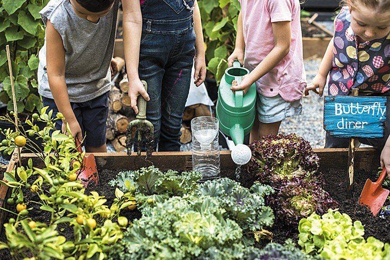 在有機蔬菜產銷班的農友教導下,學生學習到的是從澆水、追肥、除草、除蟲、拔菜、挑菜...