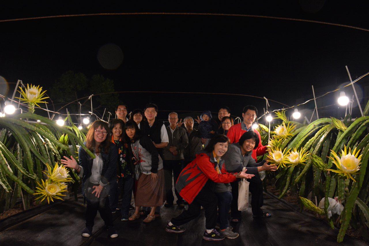 台南市「陳爸白頭翁果園」火龍果昨晚約有2000朵同時盛開,賞花民眾直呼太美了。記...