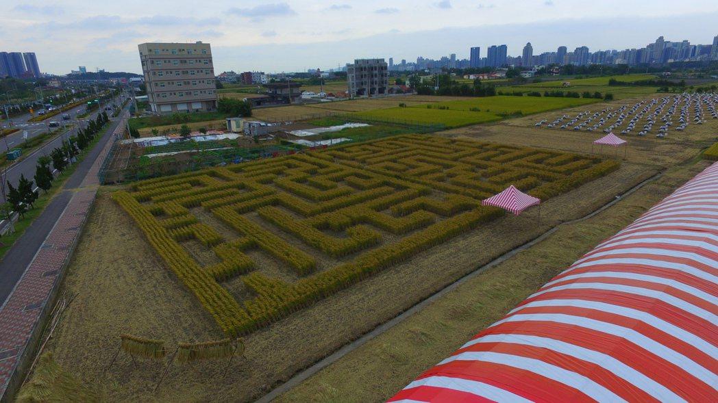 現場還有設置觀景台,可一覽稻田迷宮全景。圖/竹東地區農會提供