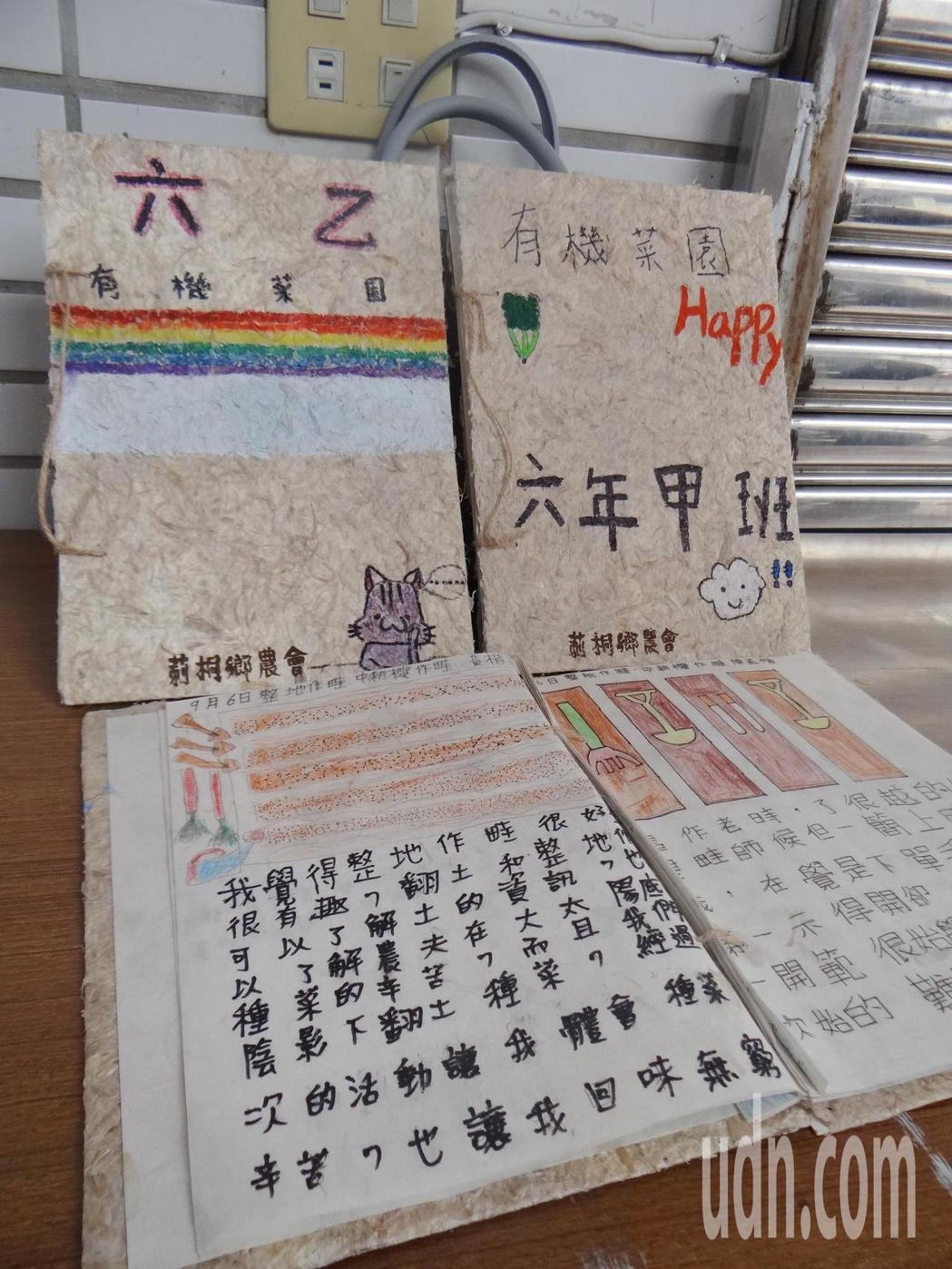 用廢棄的蒜頭膜打漿製成書本,並用來記錄小農農事,讓書中充滿濃濃的蒜香農味,是一大...