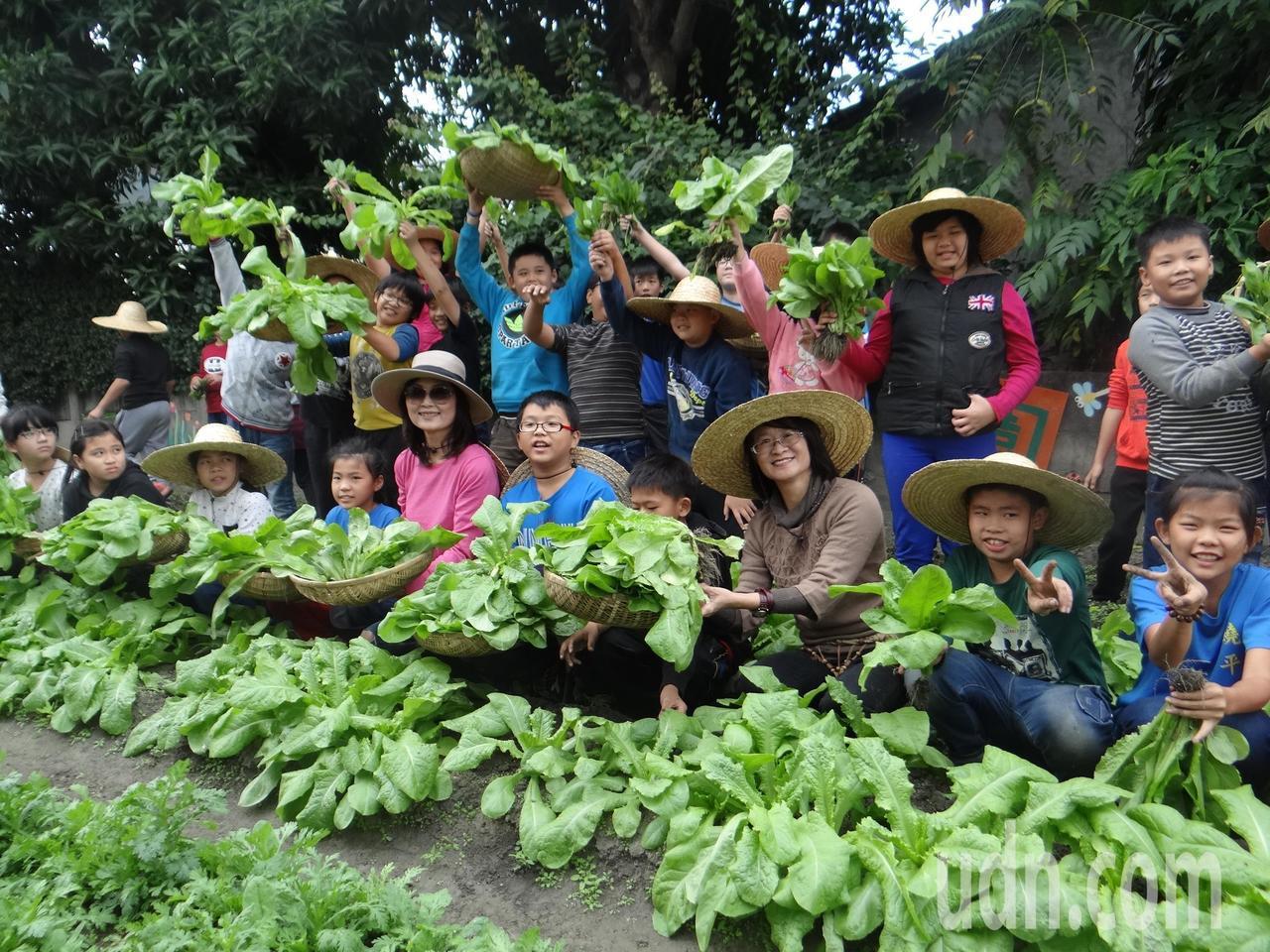 莿桐農會在饒平國小推動食農教育,讓小朋友從農田到餐桌學習友善土地,珍惜生命。記者...