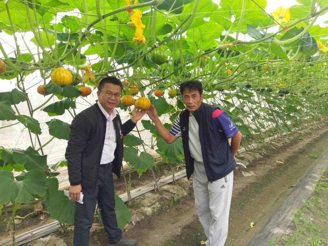 現任國中體育老師的李文修(右)也是種瓜達人,農糧署南區分署長姚志旺都佩服。記者潘...