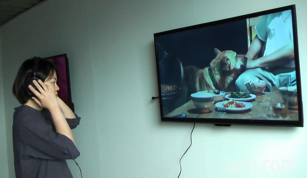 高雄藝術首度策畫「貨櫃錄像展區」,邀請指標性畫廊群提供精采錄像作品。記者徐如宜/...