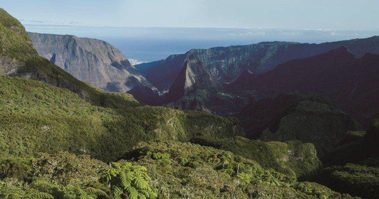 波旁尖身咖啡豆僅生長在法國的留尼旺島。圖/SOGO提供
