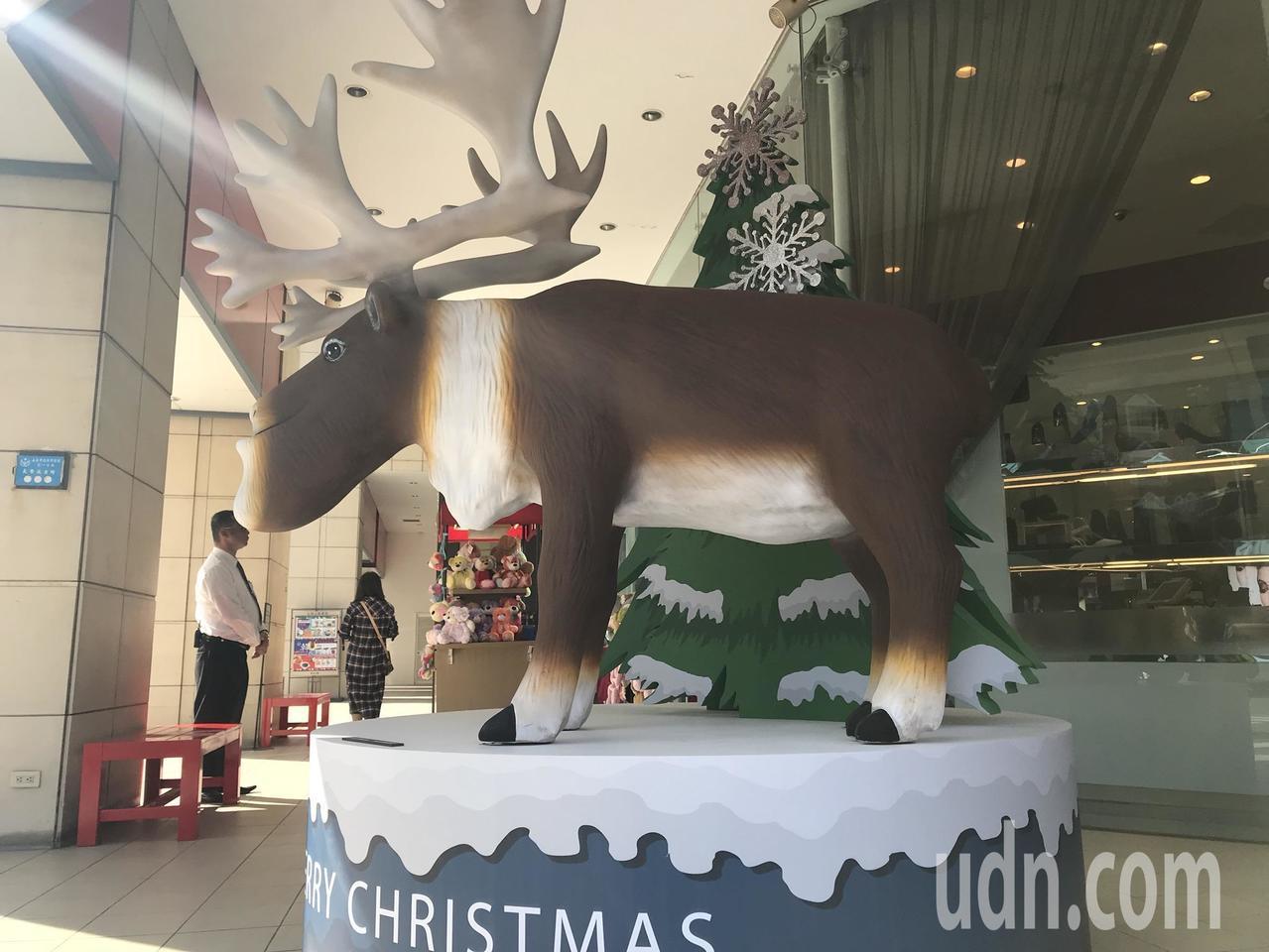 這款萌度高的大型麋鹿公仔引起熱烈討論,許多人誇可愛,也有人說「長得也太有特色」。...