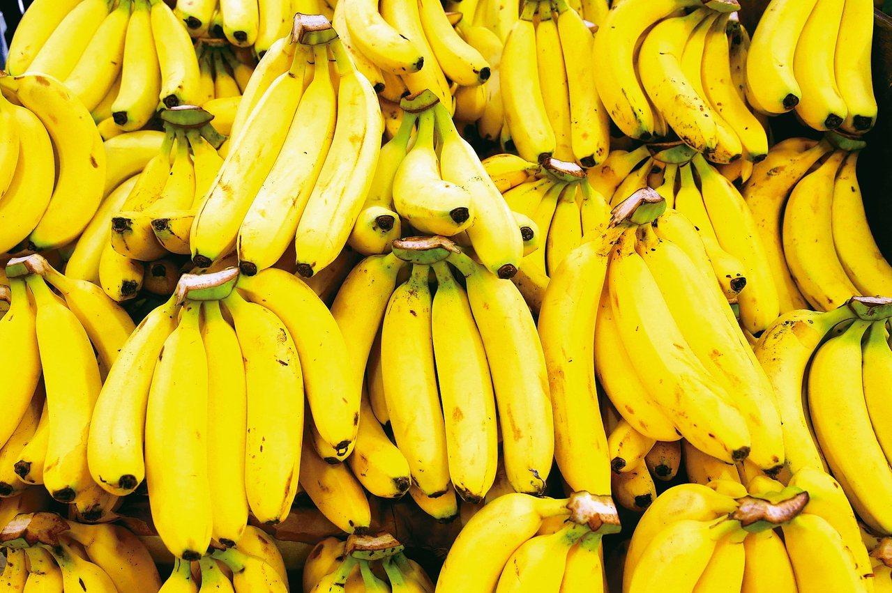 香蕉富含多種維生素、礦物質及纖維質,營養豐富。 本報資料照片