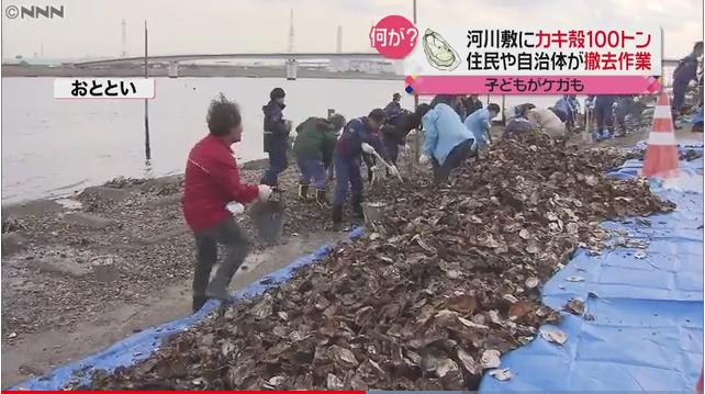 被隨手丟棄的蚵殼堆積如山,散落在河川附近長約1公里的地方,估計大約有100噸以上...