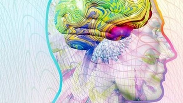 克里斯表示,人類的每一個「感覺」彼此都是有關連的。 圖/T客邦