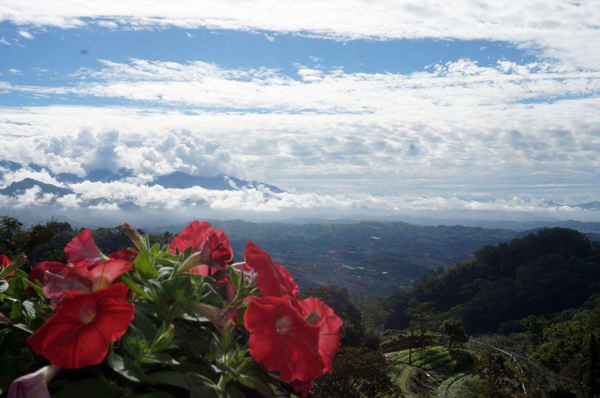 清晨與傍晚時分的雲也居一,雲霧景緻另有一番浪漫之美。(圖片提供|雲也居一)