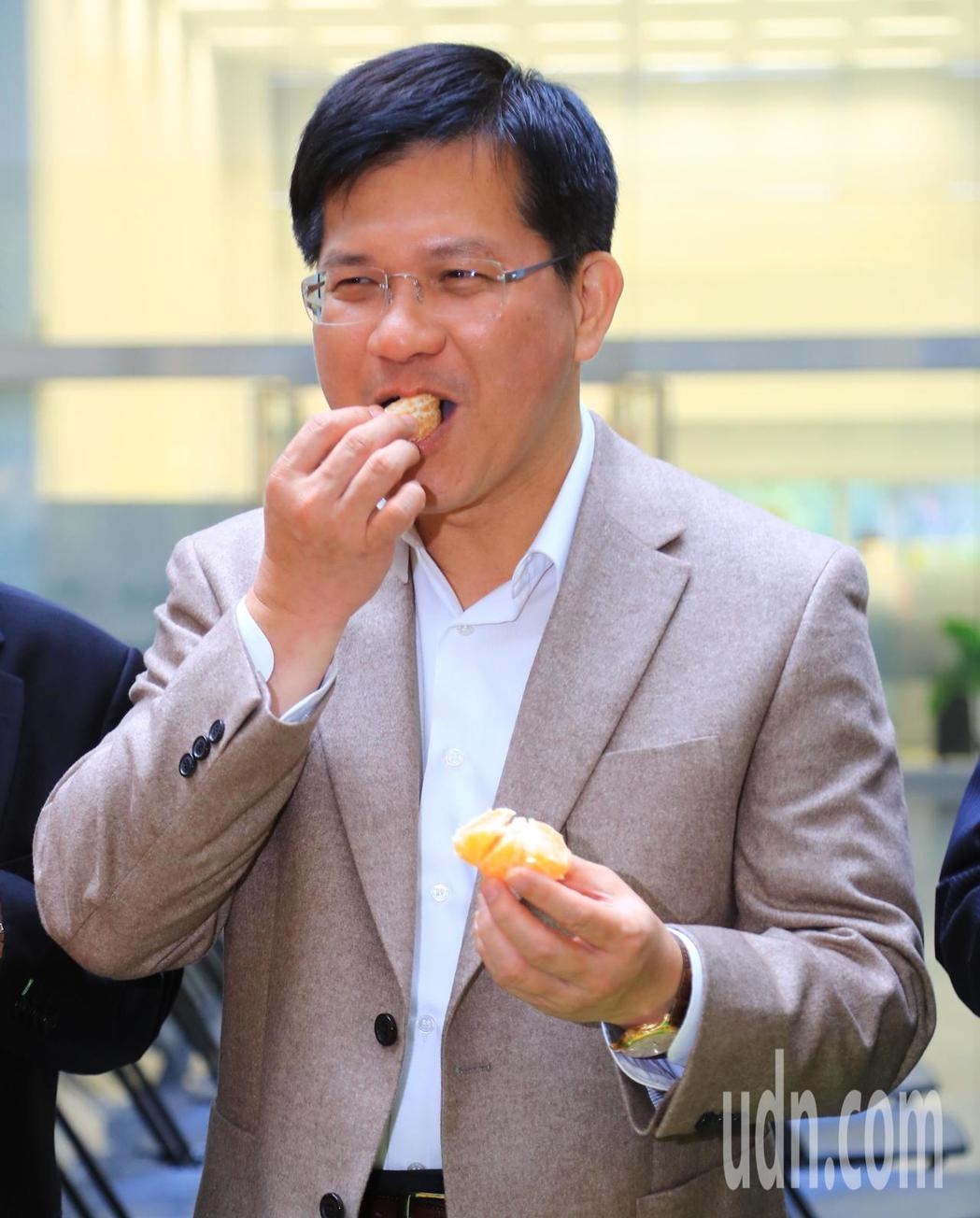 台中市採購30公噸椪柑,送給食物銀行;台中市長林佳龍今早試吃,好吃表情藏不住。記...