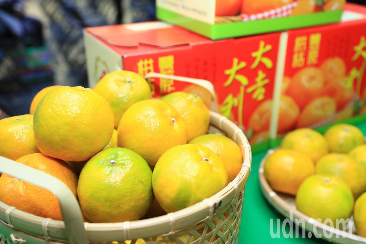 今年椪柑價跌4成,台中市採購30公噸椪柑,送給食物銀行。記者洪敬浤/攝影