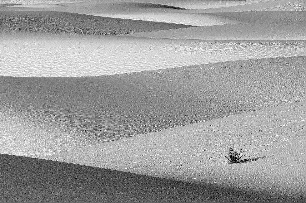 陳海騰沙漠攝影作品。攝影/陳海騰