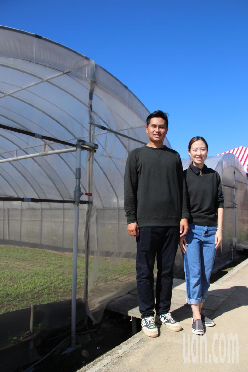 桃園市八德區農民邱冠鈞和太太尤優佳一同傳承家業,成為二代青農。記者許政榆/攝影