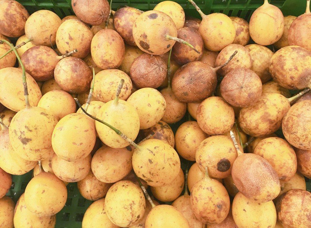 原產於巴西的百香果在南洋也很普遍。 圖/朱慧芳