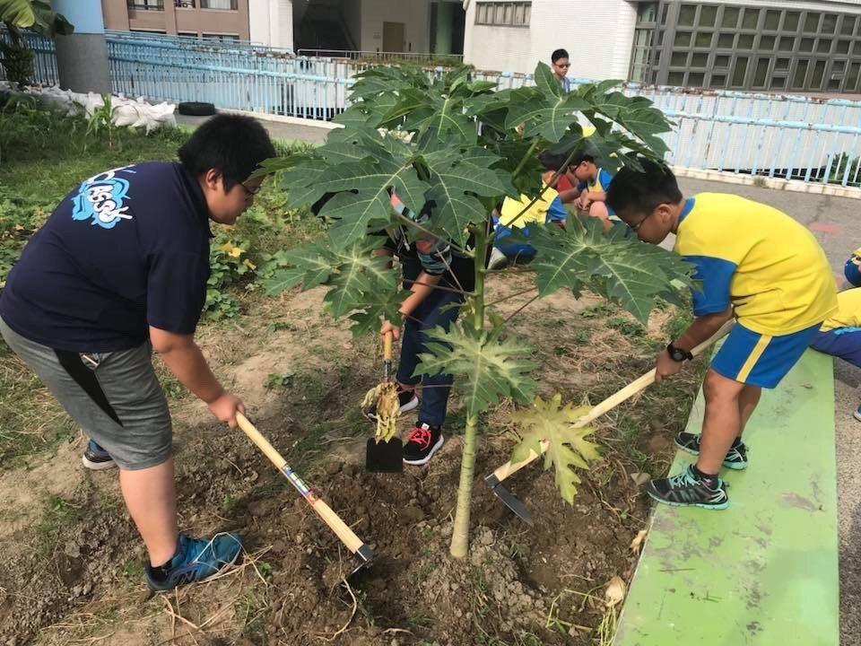 上石國小的學生一開始很怕碰到草、踩到土,摸到就想洗手,短短1年時間什麼都不怕了,...