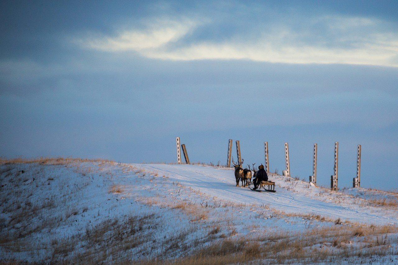 在俄羅斯亞馬爾-涅涅茨自治區,一名涅涅茨男子駕著雪橇行駛在路上。新華社