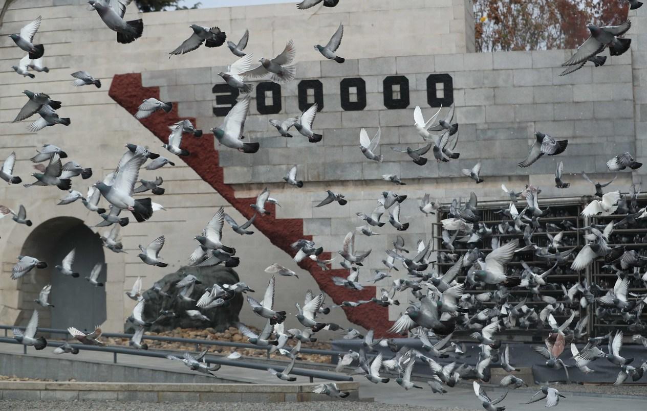 13日大陸舉行國家公祭儀式放飛和平鴿,高規格悼念南京大屠殺死難者,但我政府單位少...