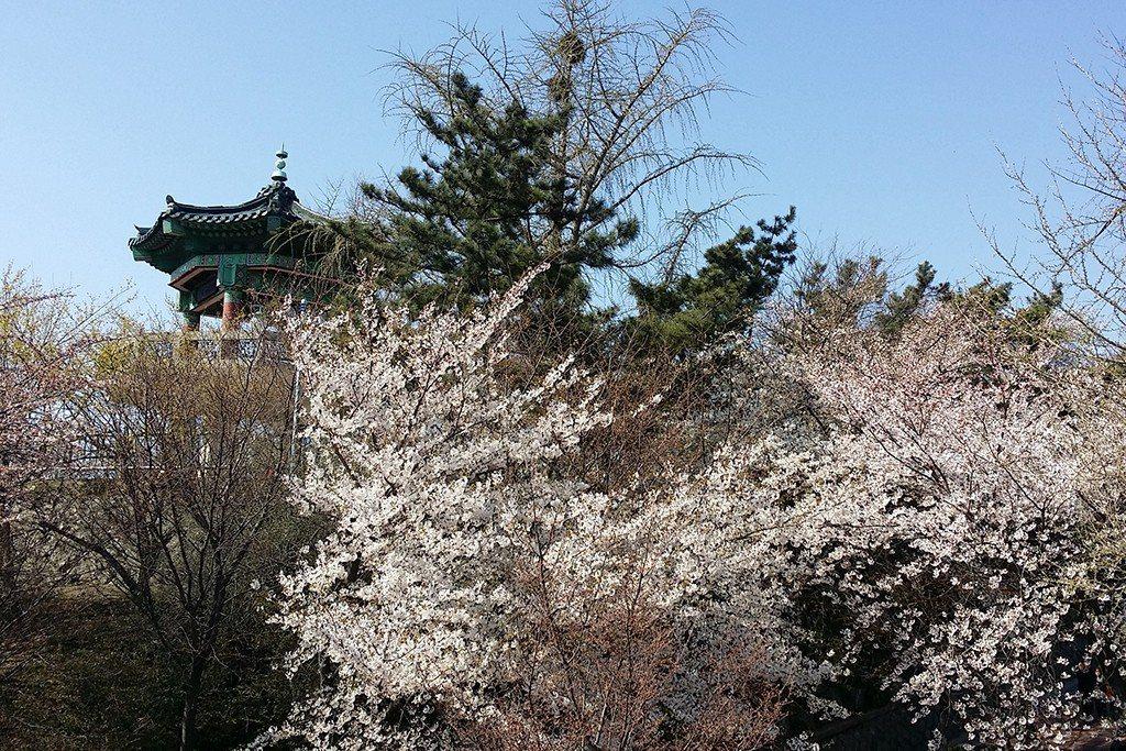 ▲韓國-仁川自由公園。(圖/Tripbaa趣吧!達人帶路)